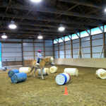 Golden Pony Club Xtreme Trail Class