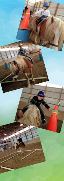 Events and actvities at Pretty Pony Pastures